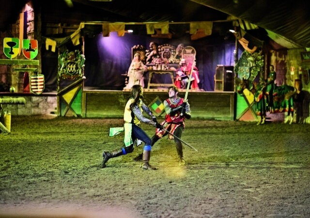 Show Medieval Times